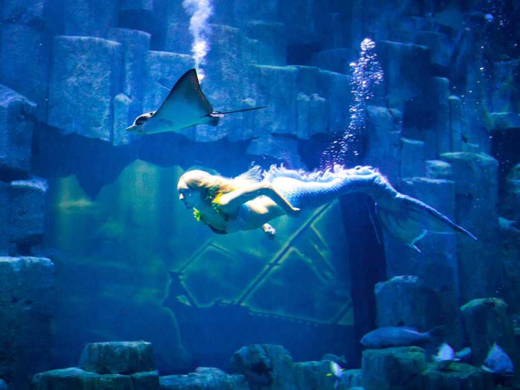 The Paris Aquarium even has mermaids
