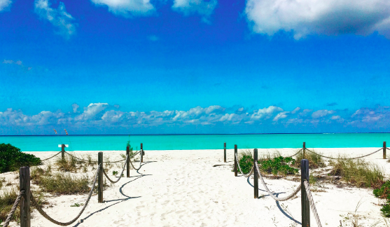 Grace Bay Beach, Caribbean - Image sourced from forbes.com
