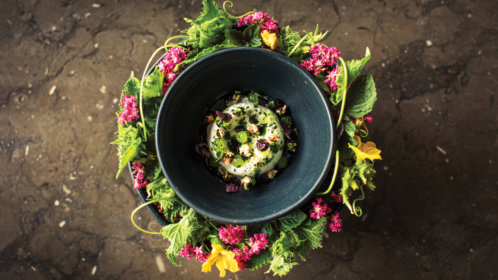small deep blue bowl with creamed dish in middle wit herbs on top, surrounded by ring of green foliage and flowers